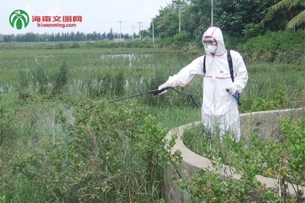 台风过后,及时给古井消毒,预防人畜发生疾病 (2).jpg